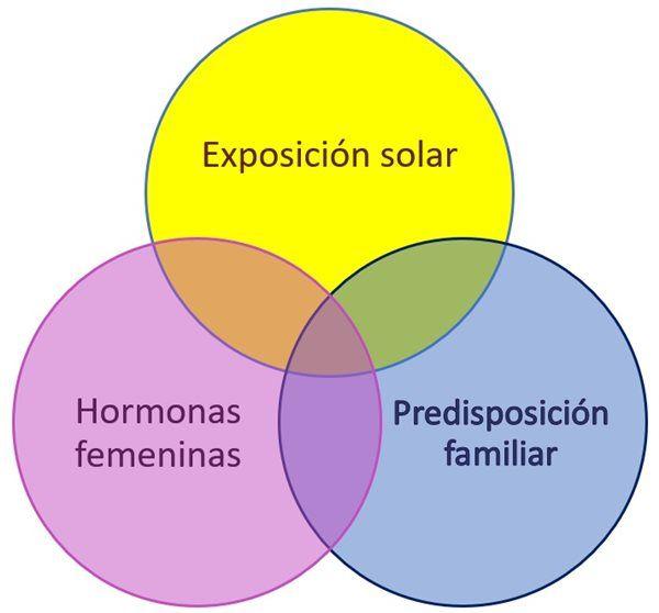 Figura 1: Causas del melasma - cloasma